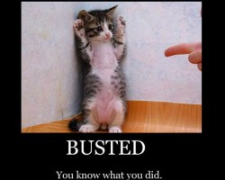 "BUSTED! Shapiro & Fishman's Turn ""FLORIDA REVERSAL"" Ruscalleda vs Hsbc Bank'"