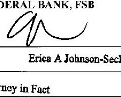 ONEWEST BANK 'ERICA JOHNSON-SECK' 'Not more than 30 seconds' to sign each foreclosure document