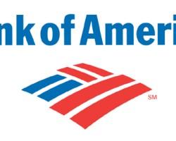 BofA halts foreclosure sales in 50 states