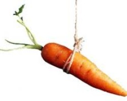 Save The Carrot Dangling of Failed HAMP, We Don't Want It