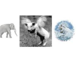"TAIBBI-ROSNER-SPITZER | re: GOLDMAN Email ""UTOPIA"" a White Elephant, Flying Pig and Unicorn"
