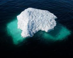 Abigail Field: The Foreclosure Fraud Iceberg