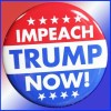 Sign Here to Impeach Donald Trump Now!!